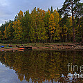 Canoes On The Shore At Loch An Eilein by Louise Heusinkveld