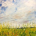 Canola Field In Abstract by Desmond Raymond