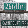 Canterbury Ice by Terry Anderson