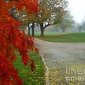 Cantiague Park  by Jeff Breiman