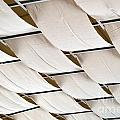 Canvas Ceiling Detail by Alys Caviness-Gober