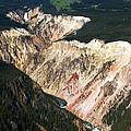 Canyon And Yellowstone Falls by Max Waugh