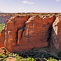 Canyon De Chelly - View From Sliding House Overlook by Christine Till