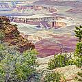 Canyon Lands by Wanda Krack