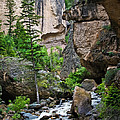 Canyon Serenity - Crazy Woman Creek - Crazy Woman Canyon - Johnson County - Wyoming by Diane Mintle