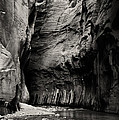 Canyon Trail 3 by Bob Phillips