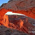 Canyonlands Spectacular by Adam Jewell