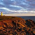 Cape Anguille Lighthouse by Mark Snyder