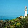 Cape Blanco Lighthouse by Richard Jenkins