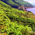 Cape Breton Highlands National Park by Thomas R Fletcher