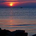 Cape Charles Rocky Sunset  by Francie Davis