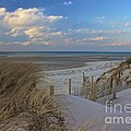 Cape Cod  by Amazing Jules