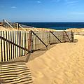 Cape Cod Beach by Mitchell R Grosky