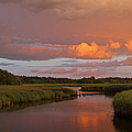 Cape Cod Bells Neck  by Juergen Roth