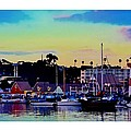 Cape Cod Harbor by Sharon  Lavoie