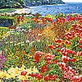 Cape Cod Ocean Garden by David Lloyd Glover