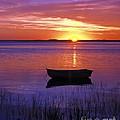 Cape Cod Sunrise by John Greim