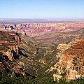 Cape Final Canyon View by Adam Jewell
