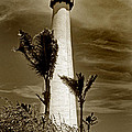 Cape Florida Lighthouse by Skip Willits