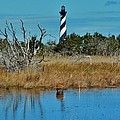 Cape Hatteras Lighthouse Deer In Pond 1 3/01 by Mark Lemmon