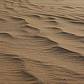 Cape Hatteras Ripples In The Sand-north Carolina by Mountains to the Sea Photo