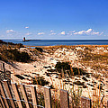 Cape Henlopen Overlook by Bill Swartwout Fine Art Photography