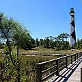 Cape Lookout Walk Way by Rand Wall