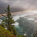 Cape Lookout Vista by Mary Angelini