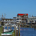 Cape May Harbor by Patrick Meek