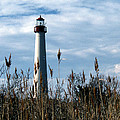 Cape May Light by Skip Willits