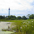 Cape May Lighthouse - New Jersey by Bill Cannon
