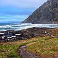 Cape Perpetua Path by Gary Olsen-Hasek