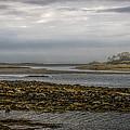 Cape Porpoise Maine - Fog On The Horizon by Bob Orsillo