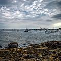 Cape Porpoise Maine - In The Evening by Bob Orsillo