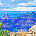 Cape Royal Blue On North Rim Of Grand Canyon-arizona by Ruth Hager