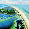 Cape San Blas Florida by John Lautermilch