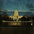 Capitol Blues by Terry Rowe
