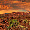 Capitol Reef National Park Utah  by Dave Welling
