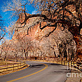 Capitol Reef Scenic Drive by Bob and Nancy Kendrick