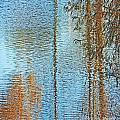 Capitol Waters by Lizi Beard-Ward