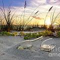 Captiva  Sunset by Jon Neidert