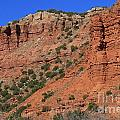 Caprock Canyon 3 by Ashley M Conger