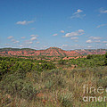 Caprock Canyon Of Texas by Ruth  Housley