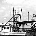 Capt. Jamie - Shrimp Boat - Bw 02 by Pamela Critchlow