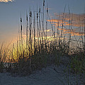 Captiva Sunset by Mike Fitzgerald