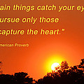 Capture The Heart by Beth Sawickie