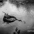 Carcass In The River by M Dale