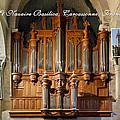 Carcassonne Montage by Jenny Setchell