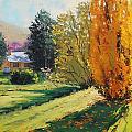 Carcor Autumn by Graham Gercken