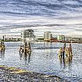 Cardiff Bay Towards St Davids Hotel by Steve Purnell